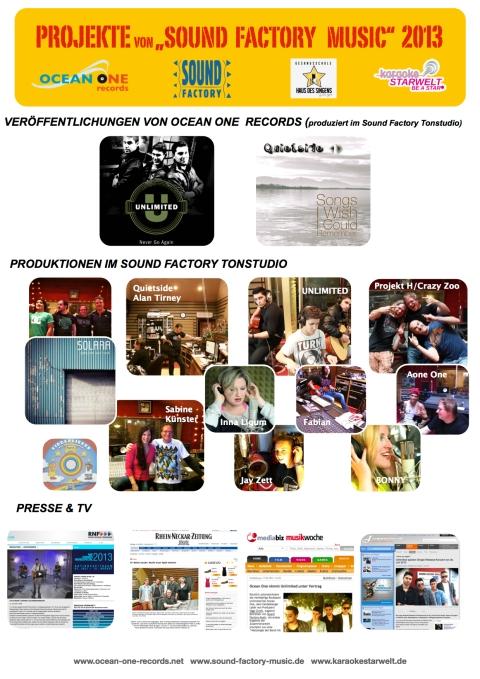 Projekte 2013-1